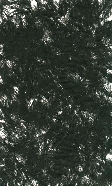 falkenstern012