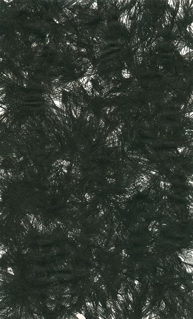 falkenstern014