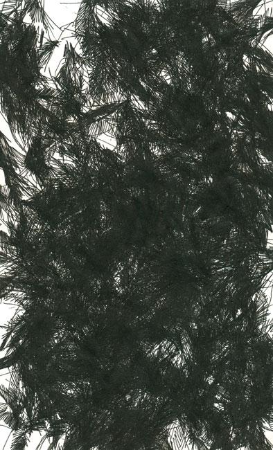 falkenstern015