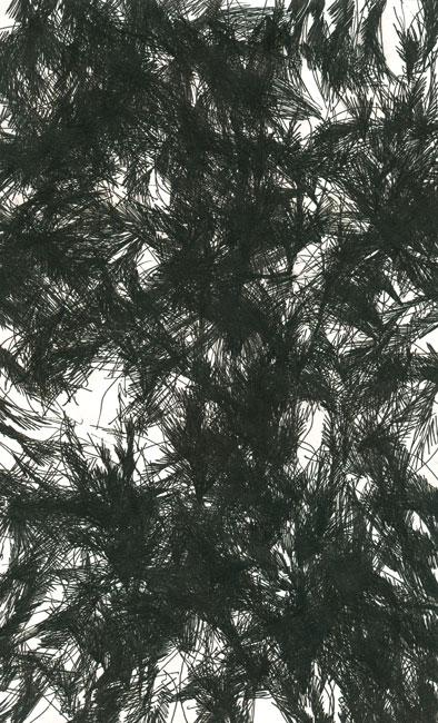 falkenstern016