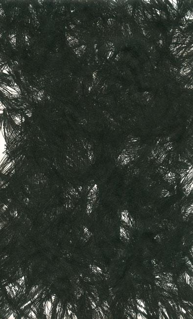falkenstern017