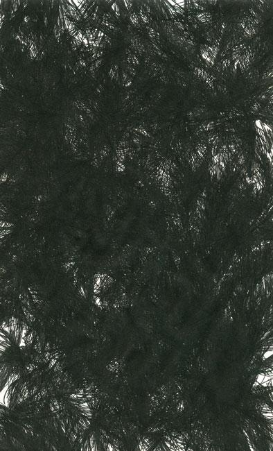 falkenstern018
