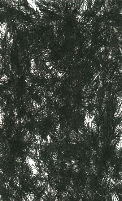 falkenstern019