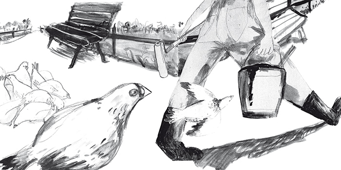 pigeon on the rooftop_ final (original)-54