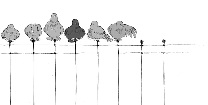 pigeon on the rooftop_ final (original)-83